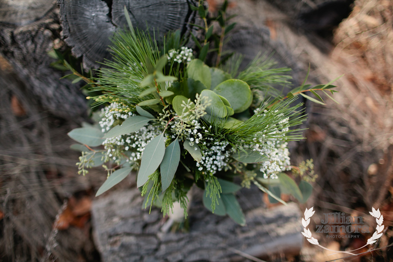 wintercountrywedding_jillianzamoraphotography62