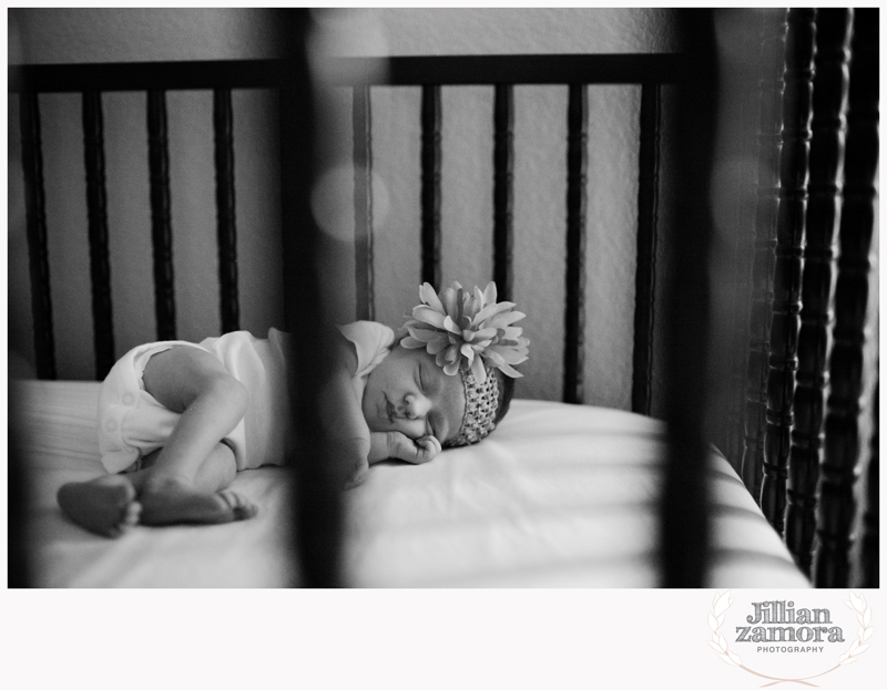 denton lifestyle newborn photography _ 07