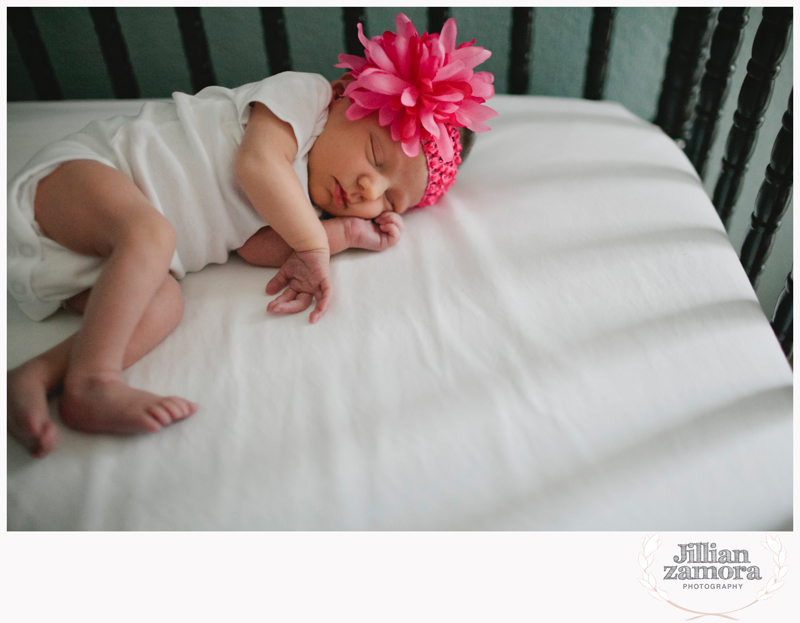denton lifestyle newborn photography _ 08