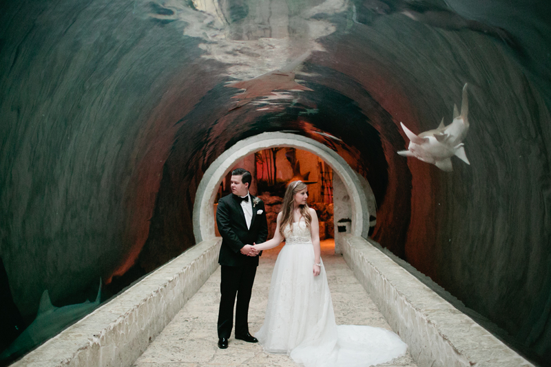 dallas world aquarium wedding _040