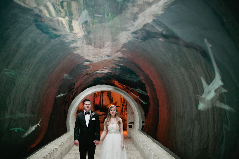 dallas world aquarium wedding _041