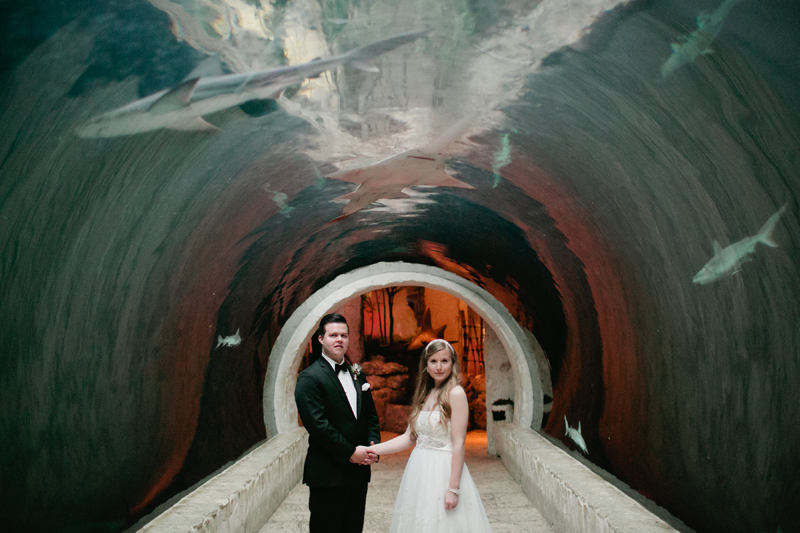 dallas world aquarium wedding _051