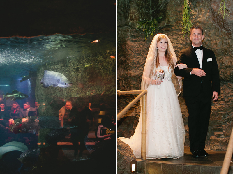 dallas world aquarium wedding _082ab
